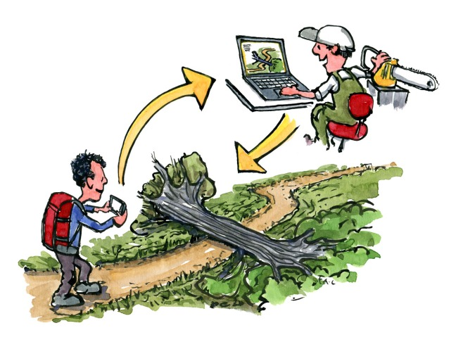 hiker using app to give feedback about the trail conditions, illustration by Frits Ahlefeldt
