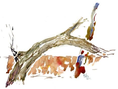 wood, akvarel - Watercolor by Frits Ahlefeldt Bornholm Coast path