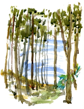 forest, akvarel - Watercolor by Frits Ahlefeldt Bornholm Coast path