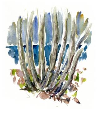 træer, akvarel - Watercolor by Frits Ahlefeldt Bornholm Coast path
